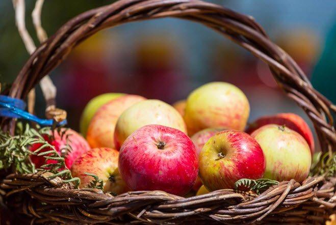 Epler i en kurv